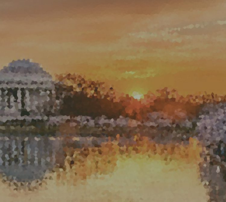 Tidal Basin Washington DC stylized